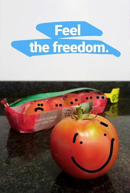 fs-feelfreedom